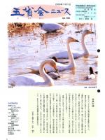 2003年11月号表紙画像