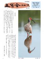 2009年秋号表紙画像